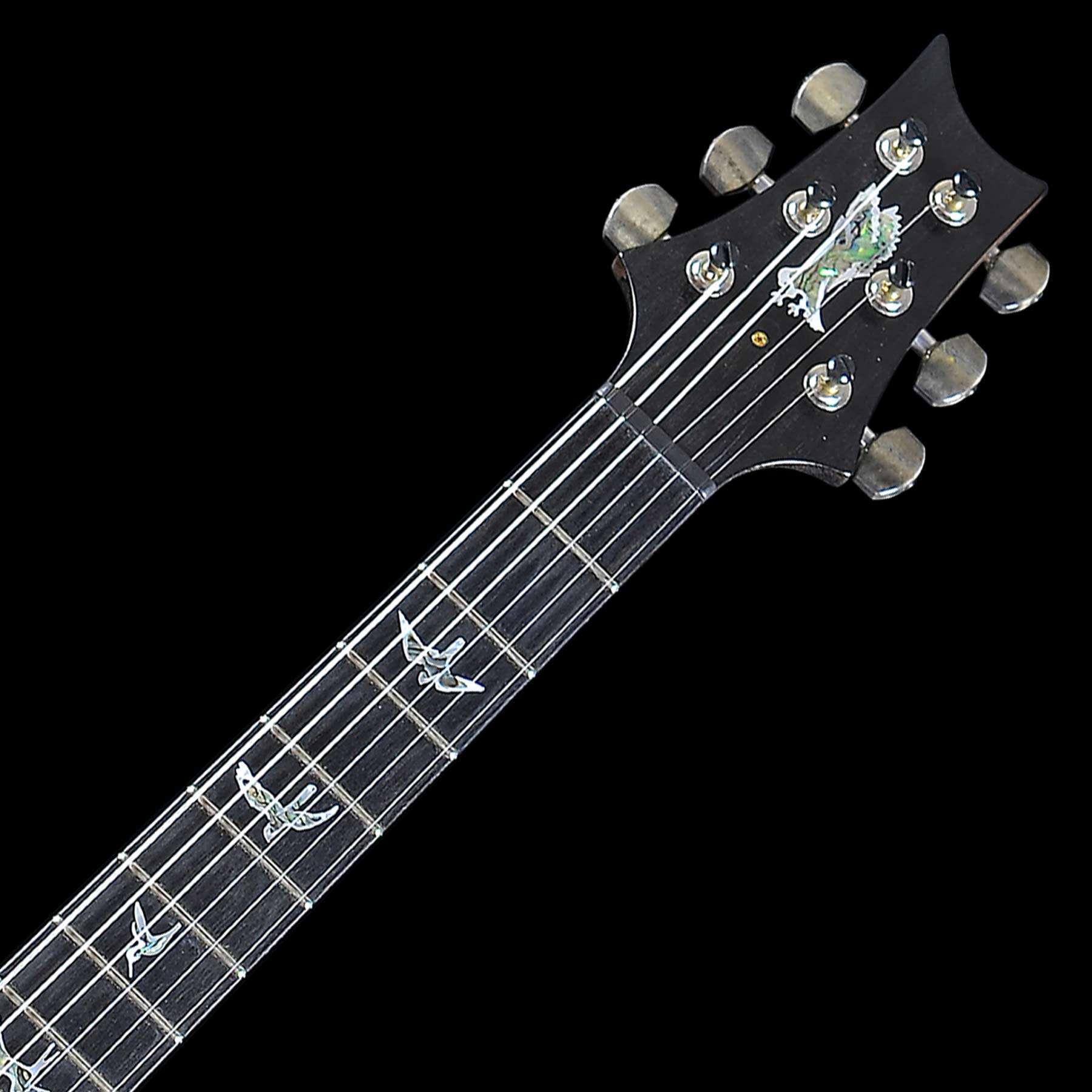 Samick Electric Guitar Wiring Diagram : Samick guitar wiring diagram caterpillar c ecm